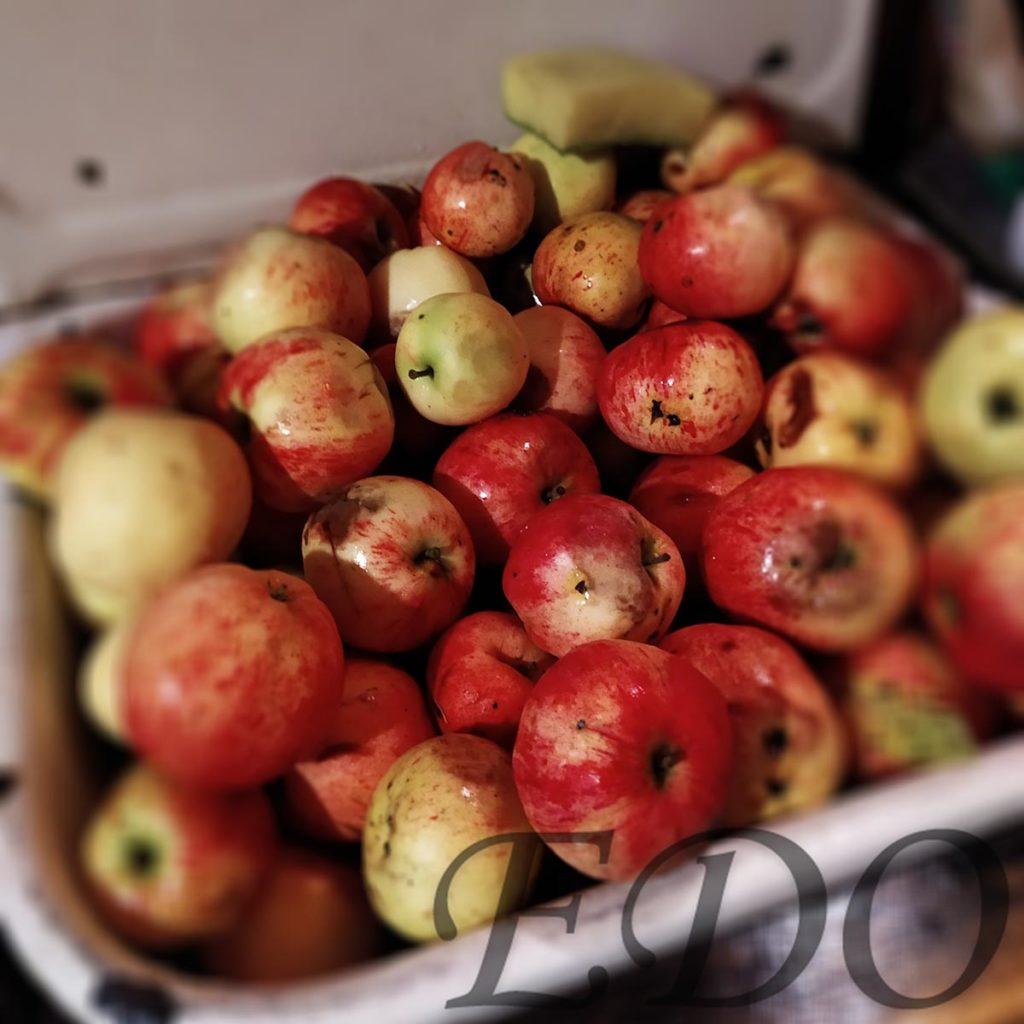 Яблоки мытые